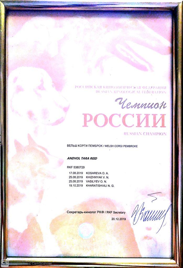 ANDVOL TARA REID CHAMPION RUSSIA