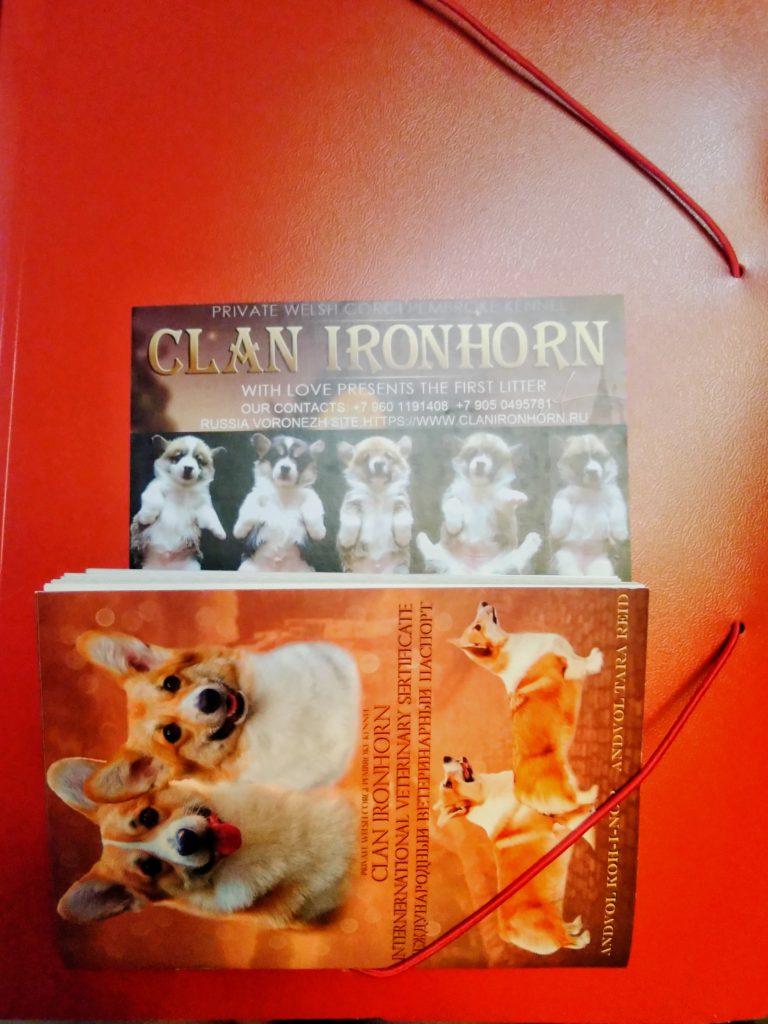 CLAN IRONHORN Документы и обложки для паспортов